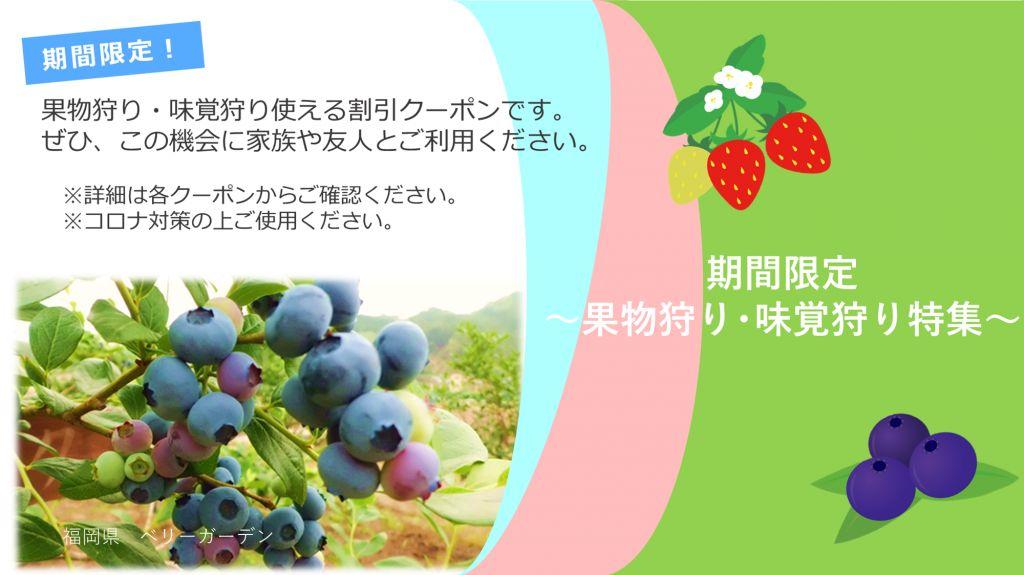 旬の果物や味覚を味わえる割引クーポンをご紹介。ぜひこの機会に、家族や友人とご利用ください。