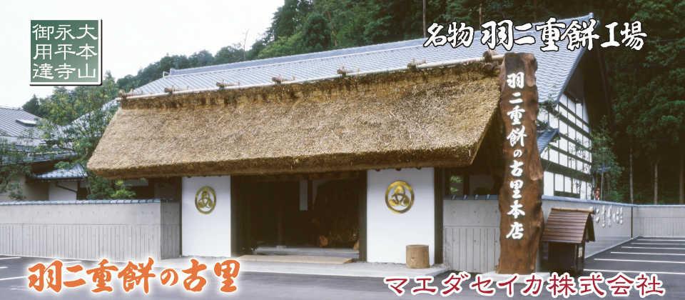 福井県|永平寺・勝山・大野