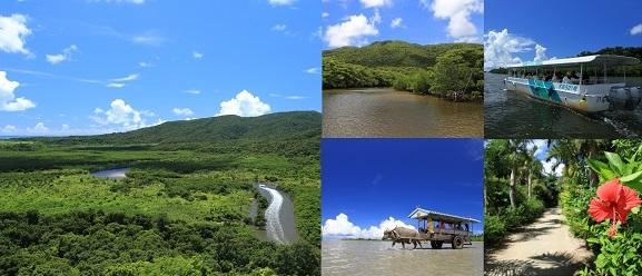 沖縄(離島)|石垣島